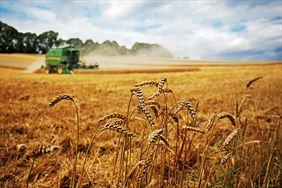 ubezpieczenia rolnicze, Agro-Complex Przedsiębiorstwo doradcze, Złotniki Kujawskie
