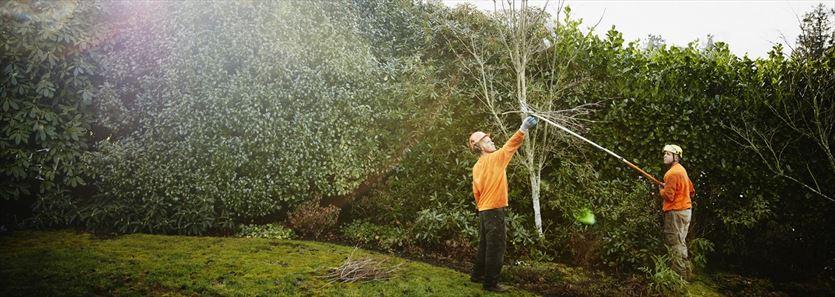 Projektowanie ciekawych ogrodów i systemów nawadniających, Kropelka Paweł Kichler, Kałdus