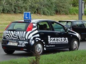 szkoła jazdy, Zebra nauka jazdy, Elbląg