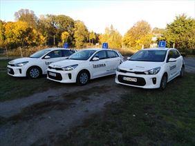 samochody, Zebra nauka jazdy, Elbląg