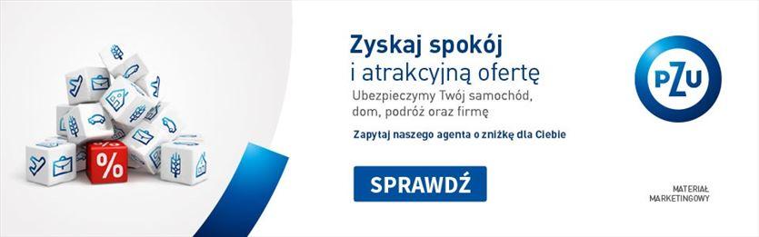 Profesjonalny agent ubezpieczeniowy dla każdego, Andrzej Stolarczyk Agent ubezpieczeniowy, Gdańsk