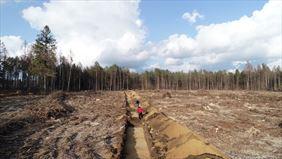 rozpoznanie powierzchniowe terenu, Firma Archeologiczna Glesum Maciej Marczewski, Gdańsk