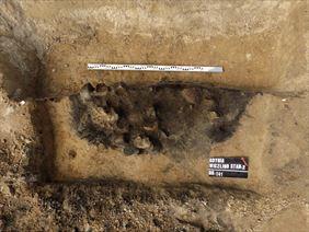 nadzory archeologiczne przy wykopach, Firma Archeologiczna Glesum Maciej Marczewski, Gdańsk