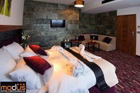 pokój do wynajęcia, Hotel Modus *** & Restauracja, Łaziska Górne