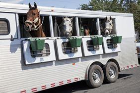 transport koni, Metbox s.c., Orzesze