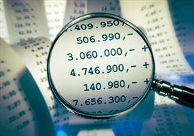 kontrola finansów, Radek Biuro rachunkowe, Żory
