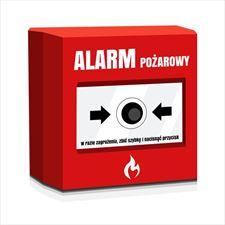 alarmy przeciwpożarowe, Infobit s.c. Kasy Fiskalne, Bielsko-Biała