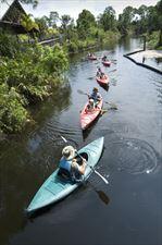 spływ kajakami, Kayaking Igor Górski, Jędrzejów