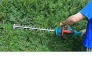 Kajus Usługi ogrodnicze