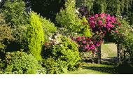 Iwona Sroczyńska Ogrody