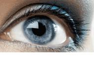 Zakład Optyczny Perfect Vision
