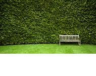 Zielony Warsztat Ewa Górecka