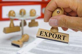 export, Transconsult Poland sp. z o.o. , Dobryń Duży