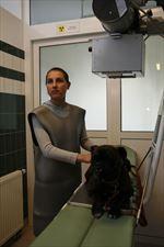 weterynaria, AS Lecznica Weterynaryjna, Olsztyn
