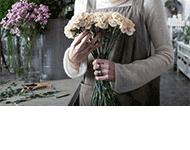 Kwiaciarnia Ogrodnictwo Antonina Schnitter