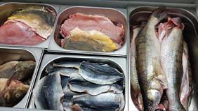świeże ryby, Tęczowy Pstrąg Hurt Detal Ryby Owoce Morza Dziczyzna, Poznań