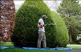 pielęgnacja ogrodów, Ogrody Grzywaczyk Pracownia kształtowania krajobrazu, Śrem