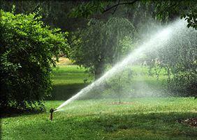 nawadnianie ogrodów, Ogrody Grzywaczyk Pracownia kształtowania krajobrazu, Śrem