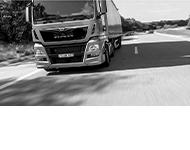 Maximus Transport międzynarodowy i krajowy