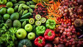 przetwórstwo warzyw i owoców, Jowam Sp. z o.o., Myślibórz