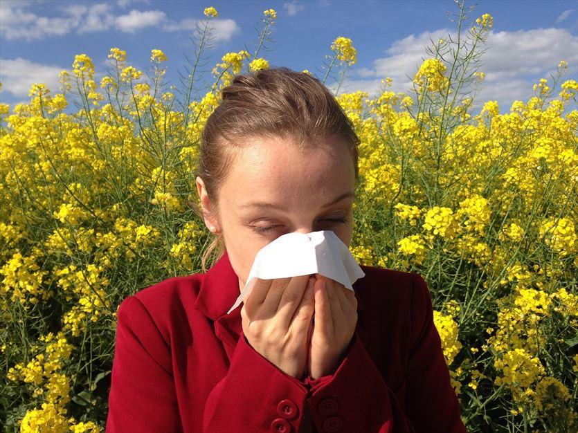 Leczenie alergii w ramach kontraktu z NFZ, Katharsis sp. z o.o. Poradnia alergologiczna. Wawrzyniak E. lek. med. Alergolog, Gorzów Wielkopolski