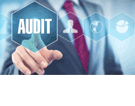 Wessly Auditing & Consulting