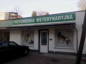 leczenie kotów, Provet s.c. Przychodnia weterynaryjna, Warszawa