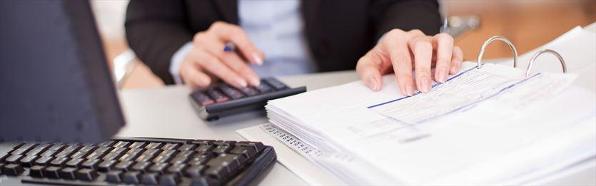 Profesjonalna księgowość dla twojej firmy!, PROGRESS Biuro Rachunkowe Katarzyna Mąkol, Radziejowice