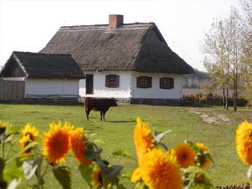 Prowadzimy imprezy plenerowe i przejażdżki bryczką, Muzeum Wsi Mazowieckiej, Sierpc