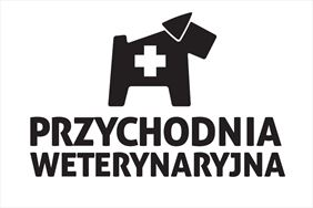 leczenie kotów, Przychodnia Weterynaryjna Magdalena Krzemińska, Warszawa