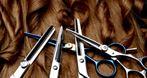 Bemifryz-Bis. Centrum zaopatrzenia fryzjerstwa