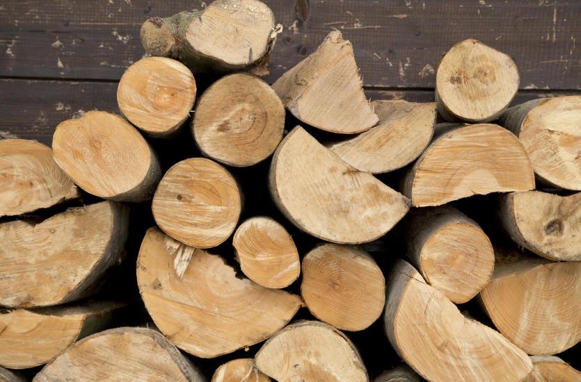 Drewno opałowe i kominkowe a wilgotność
