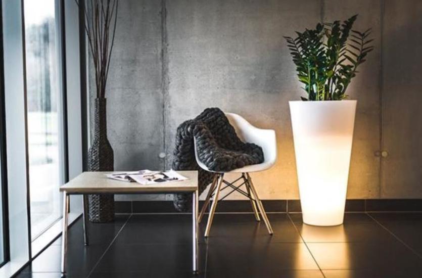 Natura na salonach, czyli roślinna aranżacja wnętrz