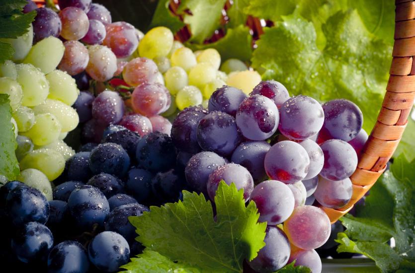 Właściwości winogron. Dlaczego warto je jeść?