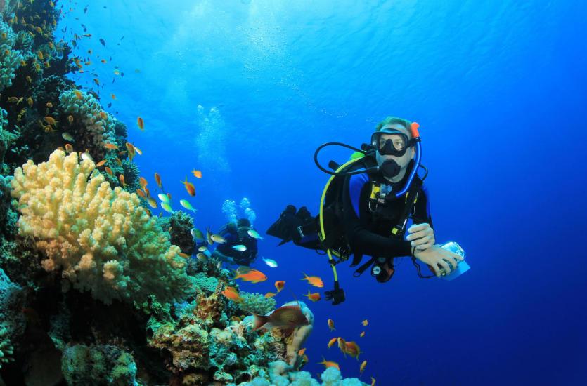 Egipt – raj dla wielbicieli nurkowania