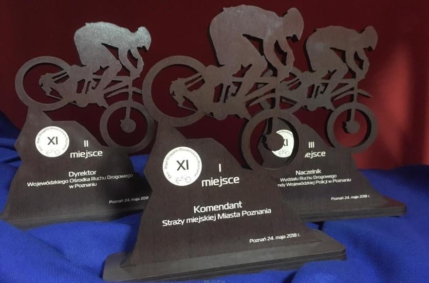 Wyjątkowe trofea, statuetki, medale i dyplom od firmy BIL-CUP!