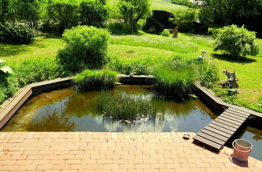Dlaczego warto zlecić projektowanie ogrodu fachowcom?