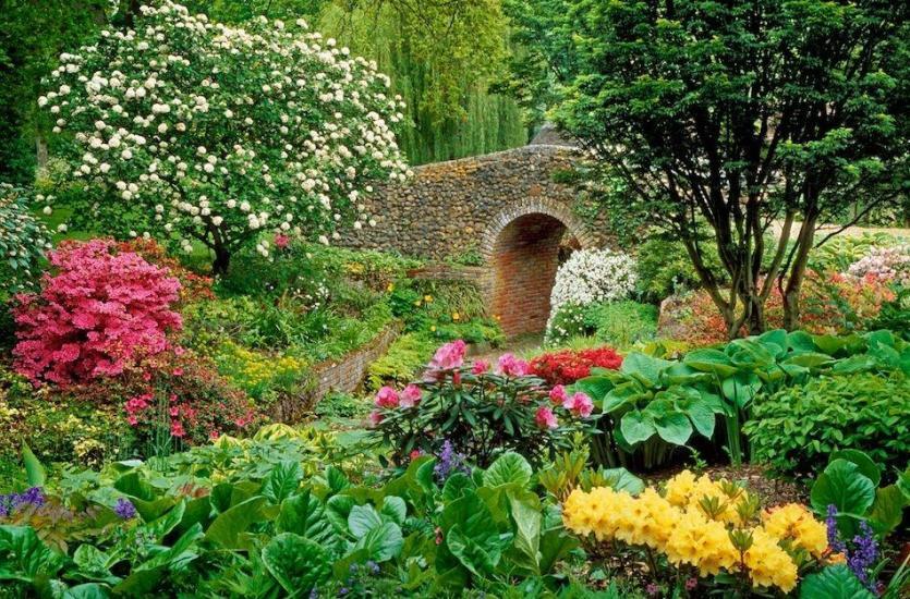 Jakie artykuły można kupić w najlepszych sklepach ogrodniczych? Gdzie je znaleźć?