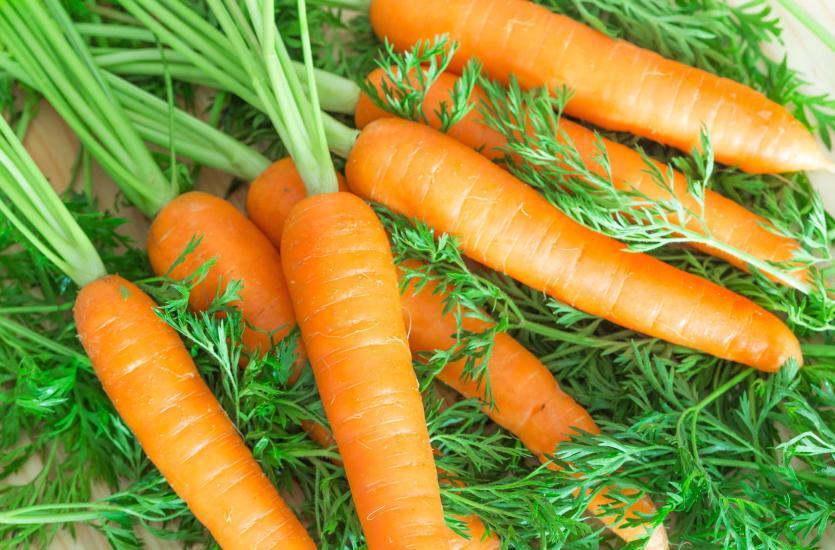 Dystrybucja warzyw w Polsce – hurtownia MAG z Krakowa