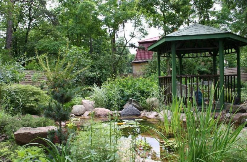 Co oferują profesjonalne firmy ogrodnicze?