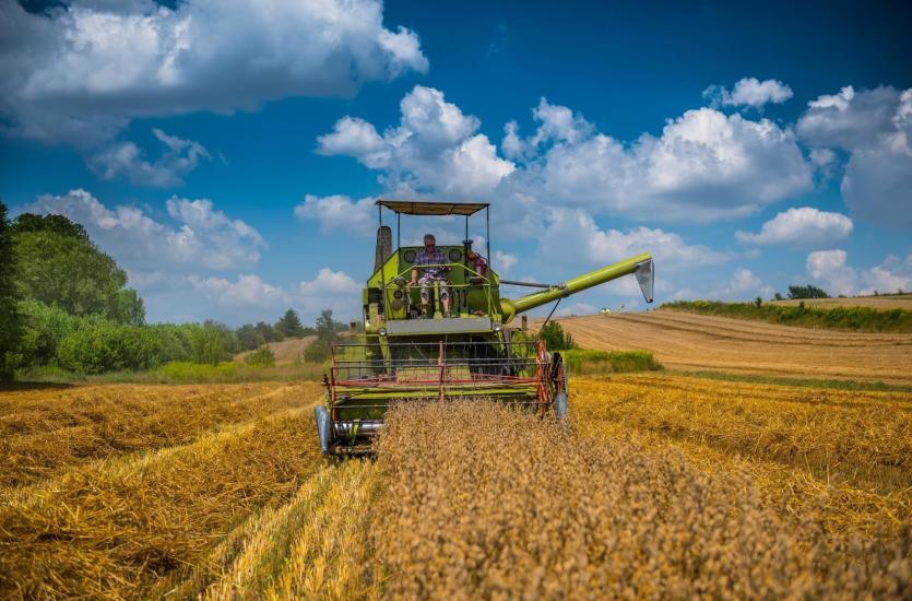 MEDIMED – kompleksowe wsparcie dla rolnictwa