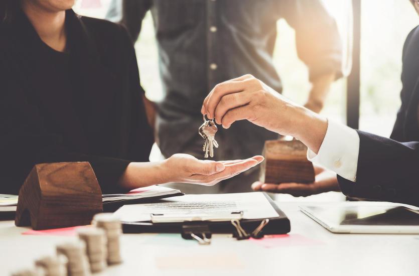 Jakie nieruchomości znaleźć można w ofercie renomowanej agencji?
