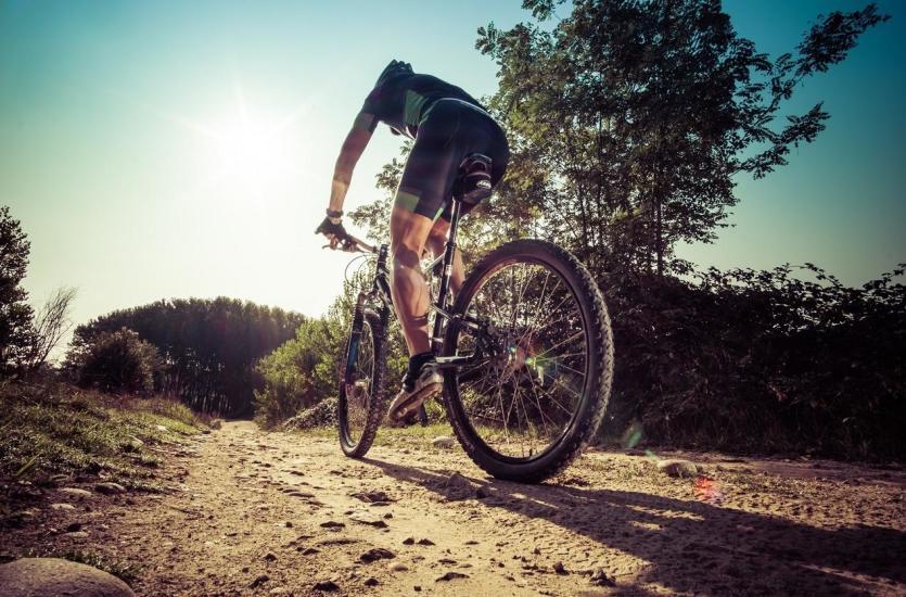 Budowa roweru górskiego. Najważniejsze cechy konstrukcyjne