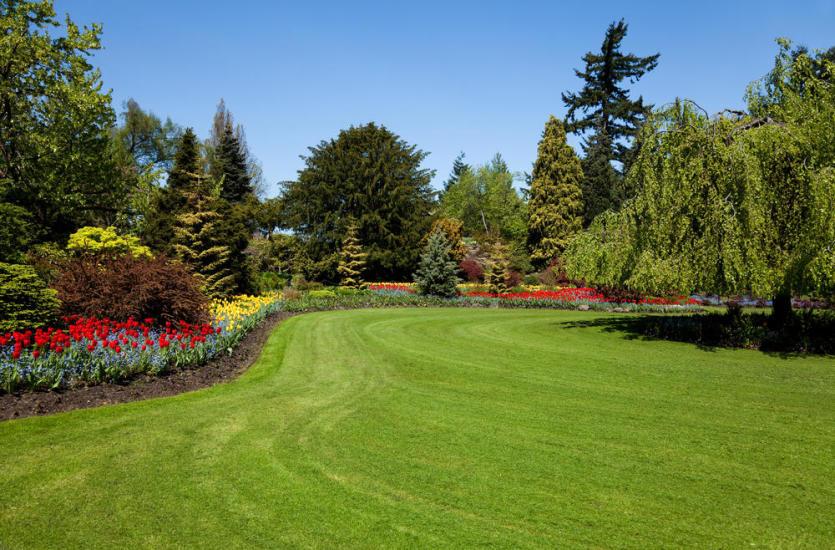 O czym powinniśmy pamiętać, planując ogród?