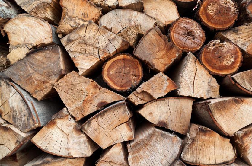 Najlepsze drewno kominkowe