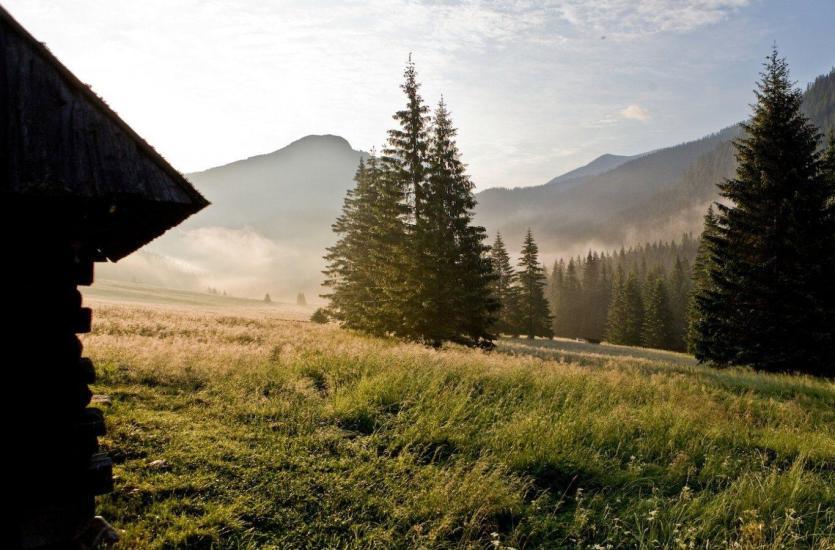 Dlaczego warto spędzić urlop w górach?