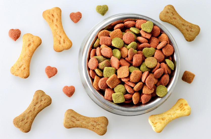Co warto wiedzieć o karmie dietetycznej dla psa