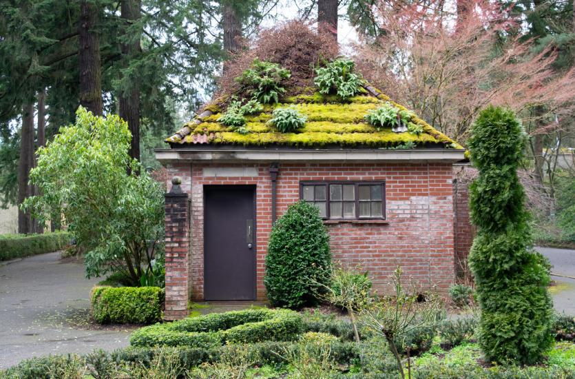 Specjalny system zielonych dachów, czyli jak stworzyć niepowtarzalne pokrycie?