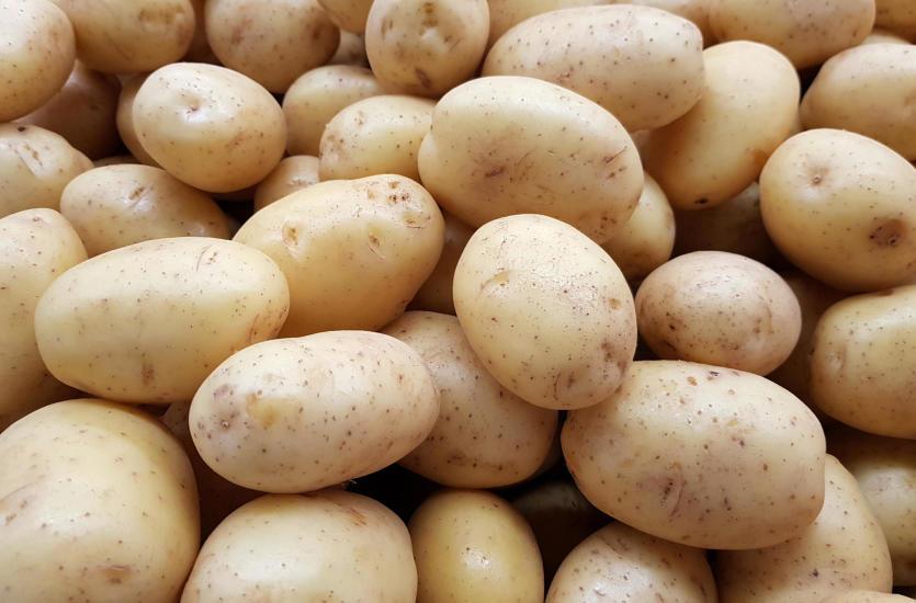 Ziemniak – król polskich upraw