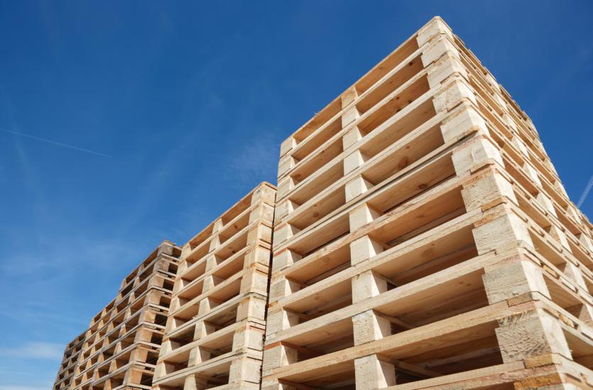 W jaki sposób zagospodarować odpady drewniane?